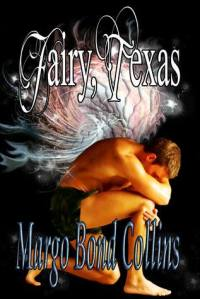 Fairy TX cover