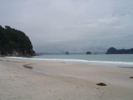 beach lizzie H