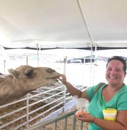 t feeding camel
