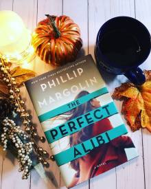book photos the perfect alibi